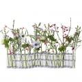 april-vase-the