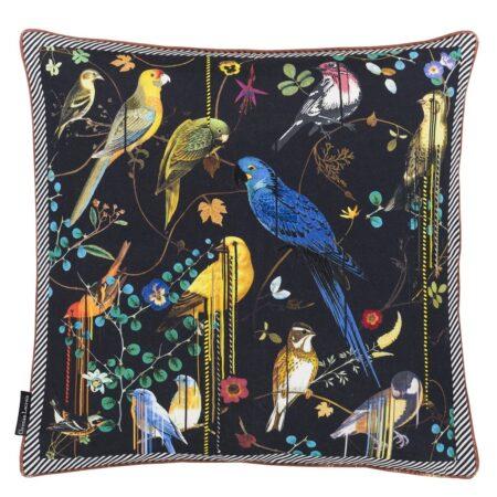 Birds Sinfonia Crupuscule