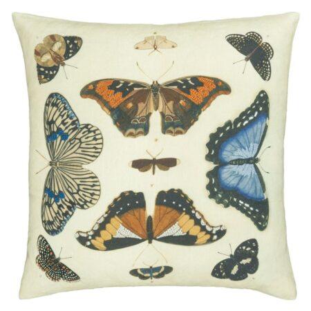 Butterflies Perchment